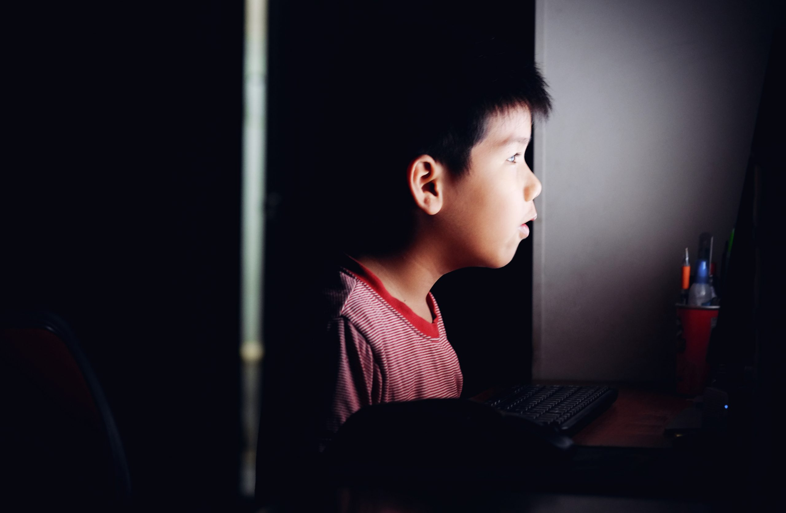 Protecting Your Children from Online Sexual Predators